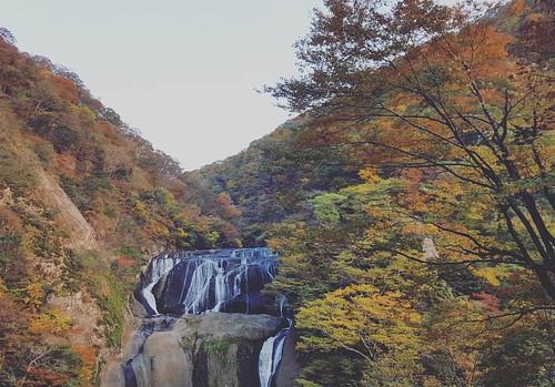 คือ Fukuroda Fall มันสวยมากกกกก จนต้องลงอีกรูป อยากนั่งชิลดูน้ำตกนานๆ แต่มันแอบหนาววววววว