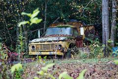 Old rusty pickup truck - Dillard, Ga. (DT's Photo Site) Tags: country roads ford pickup rabun georgia vintage rusty vanishing old fall foliage woods