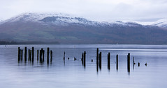 Loch Lomond #14 (Claire Stones) Tags: wood november scotland nikon7100 water westcoast nikond7100 loch lochlomond snow