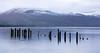 Loch Lomond #14 (Claire Stones) Tags: wood november scotland nikon7100 water westcoast nikond7100 loch lochlomond snow