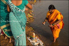 Puja.    T Narsipura (Claire Pismont) Tags: asia asie inde india karnataka kumbhmela puja yellow woman women water river documentory travel travelphotography pismont clairepismont colorful couleur color colour hinduism hindouisme