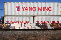 Palmr (quiet-silence) Tags: graffiti graff freight fr8 train railroad railcar art palmr phd lsd intermodal wellcar bnsf bnsf237536