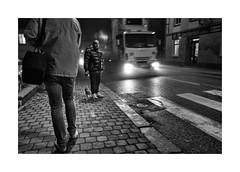 Walking the dog (Jan Dobrovsky) Tags: contrast document dog grain krásnálipa leicaq night northernbohemia outdoor street