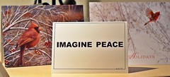 """Imagine Peace-An Idea Who's Time Has Come!!! (Happy 16th Anniversary To US!) Tags: odc goodnews imaginepeace card christmas rosalynn presidentjimmycarter standingrock northdakota sioux pipeline"