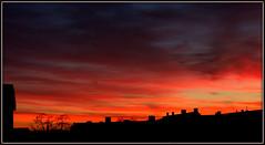 Sunset over my Neighbourhood (cowgirl_dk) Tags: copenhagen kbenhavn solnedgang sunset sillhouette lividcolours farverig olympusomdem5ii mzuikodigital1240mm128pro nrrebro dusk skumring himmel skyer udendrs orange skyisburning himlenbrnder