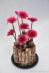 #Gezellig: #Gerbera's... (floralworkshops) Tags: berk germini schaal