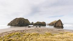 What The Ocean Gives, The Ocean Takes (John Westrock) Tags: oregon goldbeach ocean pacificnorthwest pacificocean beach nature canoneos5dmarkiii canonef1635mmf4lis