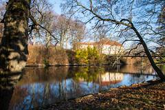 City nature (Maria Eklind) Tags: water canal kungsparken malmö tree bro nature reflection spegling kanal outdoor city park sweden bridge skånelän sverige se