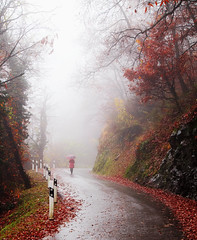 Goodbye... (Alex Switzerland) Tags: fog mist nebbia mystic mistico autumn autunno landscape wood mountain canon eos 6d ticino switzerland lugano luganese explore misty