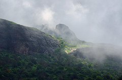 Through the Clouds... (_Amritash_) Tags: travel india mist mountains fog monsoon maharashtra rains rainclouds westernghats sahyadri travelindia mountainpeak throughtheclouds incredibleindia malsej sahyadrirange indiantravel malsejghat monsoontravel mountainsnap माळशेजघाट माळशेज