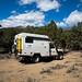 Acampamento na Floresta Nacional Toiyabe