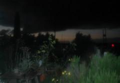 Garden Noir (Bruners) Tags: its garden drawing label today soundtrack in dungenessopenstudios telrae httpswwwyoutubecomwatchvvklaybu0kdu
