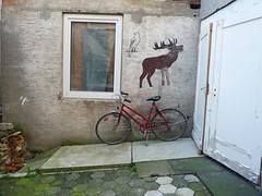 röhrender Hirsch auf dem Fahrrad (QQ Vespa) Tags: bike stilleben cycle fahrrad hof hirsch hinterhof falke baddriburg röhrender