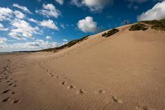 Sand Dunes (David Fullwood) Tags: ireland summer ravenspoint curracloe