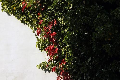 "Eivind-Berggrav-Zentrum (09) • <a style=""font-size:0.8em;"" href=""http://www.flickr.com/photos/69570948@N04/21351059683/"" target=""_blank"">Auf Flickr ansehen</a>"