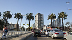 Poniente Casino (A. Wee) Tags: chile road city boulevard casino promenade poniente viadelmar