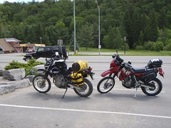 The Pigs in Minden (chuck.horne) Tags: madawaska klr dr650