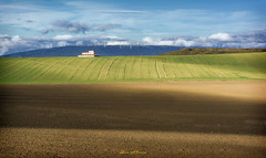 El silo de Pte. Alto Nº 21 (Yon Ibarrra (+ 1.000.000 VISITAS)) Tags: morning brown verde green mañana clouds store nikon grain silo nubes mills molinos 2015 marrón d7100 coth5