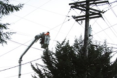 Repair efforts in Kitsap County (Puget Sound Energy) Tags: seattle city trees usa storm loss lines electric power unitedstates wind stormy wash electricity restoration powerline poweroutage poles powerpole pse outage downed highwinds pugetsoundenergy windgusts pugetpower downtree kitsappoulsbo