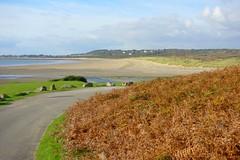 Deserted Seaside (Dave Roberts3) Tags: road autumn sea seascape fall beach wales landscape seaside sand glamorgan bracken ferns bridgend ogmorebysea merthyrmawr supershot citrit sunrays5