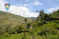 nurkowanie-travel-pl-109.jpg (www.nurkowanie.travel.pl) Tags: indonesia places papua baliem