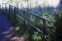 (Nowhere land ) Tags: road naturaleza abandoned nature grass way camino pasto railing abandonado baranda