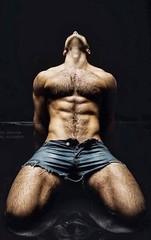 JAKE (NY10014) Tags: hairy man sexy pose worship hunk workout gym abs stud showoff bulge hotpants shortshorts