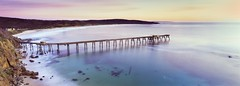 Catherine Hill Bay (rubberducky_me) Tags: ocean morning blue panorama green film beach water sunrise newcastle purple jetty australia nsw fujifilm linhof centralcoast catho catherinehillbay coalloader linhoftechnorama linhoftechnorama617iiis