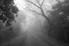 Hiking (GaRiTsanG) Tags: ricoh gr grd bw blackwhite mountain hongkong hiking