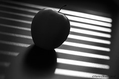 IMG_8584 Pomme Vnicienne (Pierrokaphoto) Tags: contrejour nb pomme store