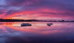 Loch an Rusgaidh (J McSporran) Tags: scotland trossachs lochlomondandtrossachsnationalpark lochrusky lochanrusgaidh reflections rowingboat boats sunrise dawn landscape canon6d ef1635mmf4lisusm