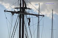The sailor  DSC_2691 (Chris Maroulakis) Tags: attica lavrio port sailor ropes sky nikon d7000 chris maroulakis 2016 vessel atyla