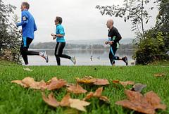 Hallwilerseelauf: Wenige Herbstboten entlang des 10 Kilometer-Laufes