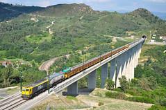 Carrilero. Viaducto de Ro Portos (rapidoelectro) Tags: 319305 319308 emd 1900 renfe taxi pantone carril lav ourense orense santiago roportos viaducto puente altavelocidad ave carrilero continentalrail mmq comsa