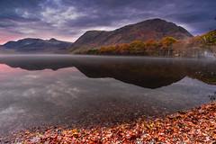 Reflections (joe_bolton) Tags: cumbria landscape scenic serene stillness reflection nikond750 sunrise autumn nikon