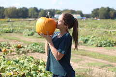 IMG_4979 (joshsagar) Tags: arkansas sunflower ar field pumpkin patch bee bumblebee bumble flower nature girl model mayflower canon t5 central photography photos pictures picture photo fall october fun photoshoot ark portrait outdoors rock little macro usa pedals insect farm butterfly