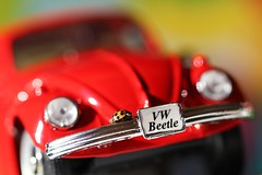 Day Tripper - Macro Mondays - Beatles/Beetles (Jeannie Debs) Tags: beatlesbeetles macromondays vwbeetle red insect harlequin vehicle toy car thebeatles daytripper macro