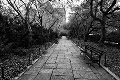 Walkway _ bw (Joe Josephs: 2,861,655 views - thank you) Tags: centralpark joejosephs nyc newyorkcity copyrightjoejosephs landscapephotography outdoorphotography ny usa blackandwhitephotography blackandwhite manhattan centralparknewyork travelphotography travel