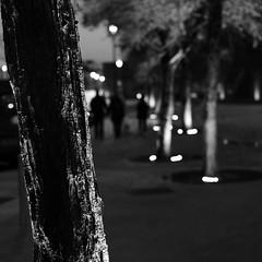 Hot walls Studio (Andrew Malbon) Tags: portsmouth southsea hampshire monochrome mono bw blackwhite strongisland street streetphotography leica leicam9 m9 summilux 35mmf14 maximumiso iso2500 night nighttime bokeh shortdepthoffield