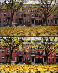 Before And After Lightroom ((Jessica)) Tags: a6000 yellow sonyalpha southend colorful historic sonyalpha6000 lightroom seasonal fall brick sony upright outdoors vibrant sonya6000 boston red sigmalens lowperspective season brownstones sigma19mm alpha leaves carpetofleaves hue massachusetts newengland seasons buildings sigma unionpark autumn ground comparison behindthescenes processing editing correction distortion distortioncorrection verticaldistortion perspectivedistortion postprocessing