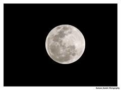 Beautiful Moon (Raman_Rambo) Tags: lunar moon moonrise sup superb super beautiful beauty raman ramansharma ramansharmadombivli photography
