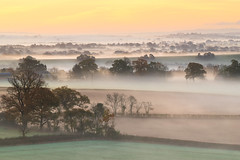 On Mornings Like This (jactoll) Tags: hanbury worcestershire dawn mist misty light landscape trees sony appicoftheweek a7ii zeiss 70200mmf4 jactoll