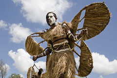 Beutterfly Dancer (Efrat Sela) Tags: papuanewguinea tribal costume people tradition festival color nature