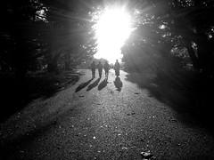 The Magnificent Four (Photoglovey) Tags: japan japanese blackandwhite magnificent four girls sun light shadow shades cowboy cowgirl mono park city tokyo walk iphone iphone4 michieru iphone4s shinjuku синжуку токио японий tree