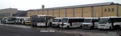 Private Bus Operators Line-Up. (Roche B10M VanHool) Tags: private bus operators lineup