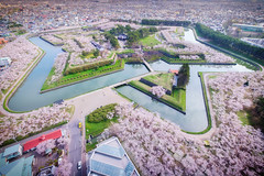 North Star (@Mahalarp) Tags: japan cherryblossom fujifilm fujifilmxseries goryokaku hakodate hokkaido sakura season spring xt1 hakodateshi hokkaid jp