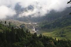 11695830_10206372313740482_5883344423065705471_n (changeyourscreennametopatrick) Tags: switzerland travel trekk hike passport mountains trees cows cheese waterfall wildflower meiringen oberland swiss wanderer