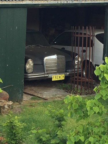 Mercedes Benz in a shed in Oatlands Tasmania. Looking slightly unloved.