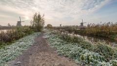 Winter is coming to Kinderdijk (wimzilver) Tags: wimboon wimzilver holland kinderdijk nederland canonef1635mmf4lisusm canoneos5dmarkiii leefilter