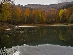 Yedigller-12 (keynowski) Tags: olympusmzuikodigitaled1240mmf28pro olympusomdem1 landscape lake yedigller bolu turkey trkiye m43turkiye nature autumn reflection
